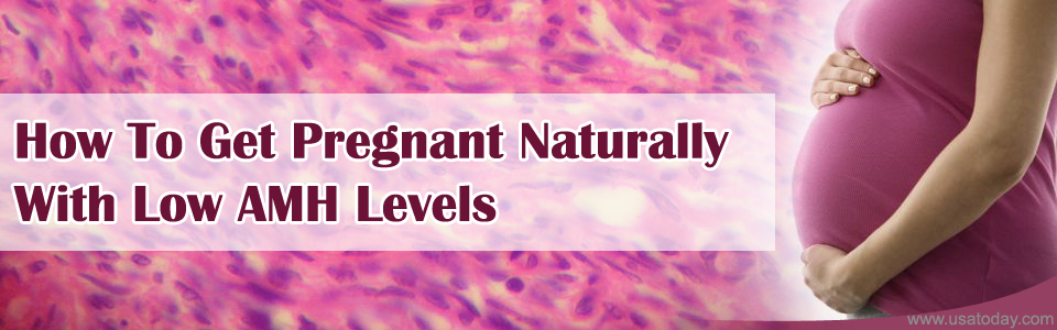 how to get pregnant with low amh levels, what happens when amh is low, amh and pregnancy, how to treat low amh naturally, What is low AMH, why do i have low amh levels, reasons for low AMH levels, why does low amh cause infertility, natural treatment for low amh
