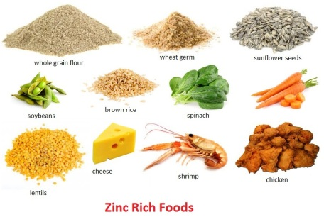 Eat Zinc Supplement Rich Foods